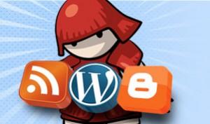 Auto bloggin software